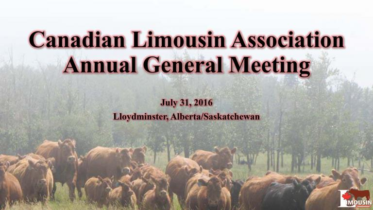 Canadian Limousin Association General Managers 2016 AGM Presentation Cover Photo