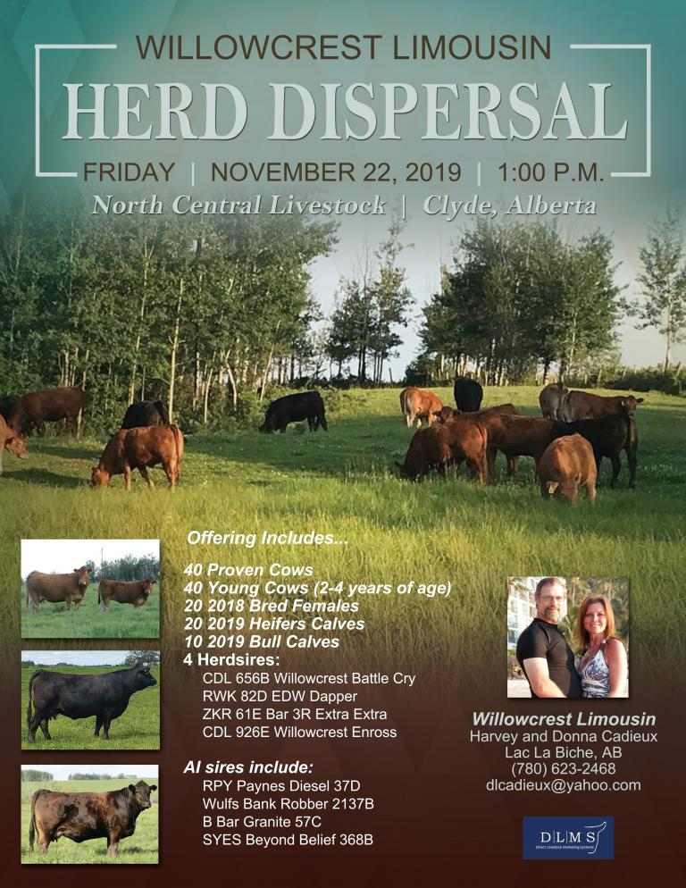 Willowcrest Herd Dispersal 2019